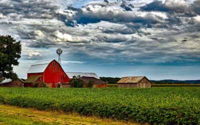 Humane Society Forms Agricultural Advisory Council in Illinois
