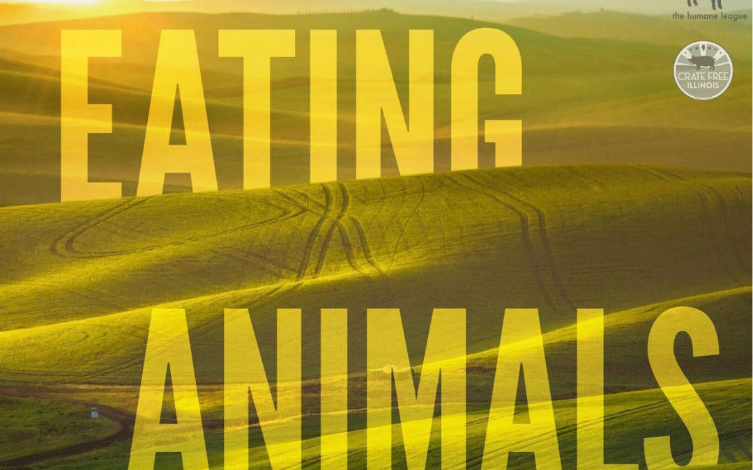 "Reduce Farm Animal Suffering in Illinois: ""Eating Animals"" Screening & Fundraiser"