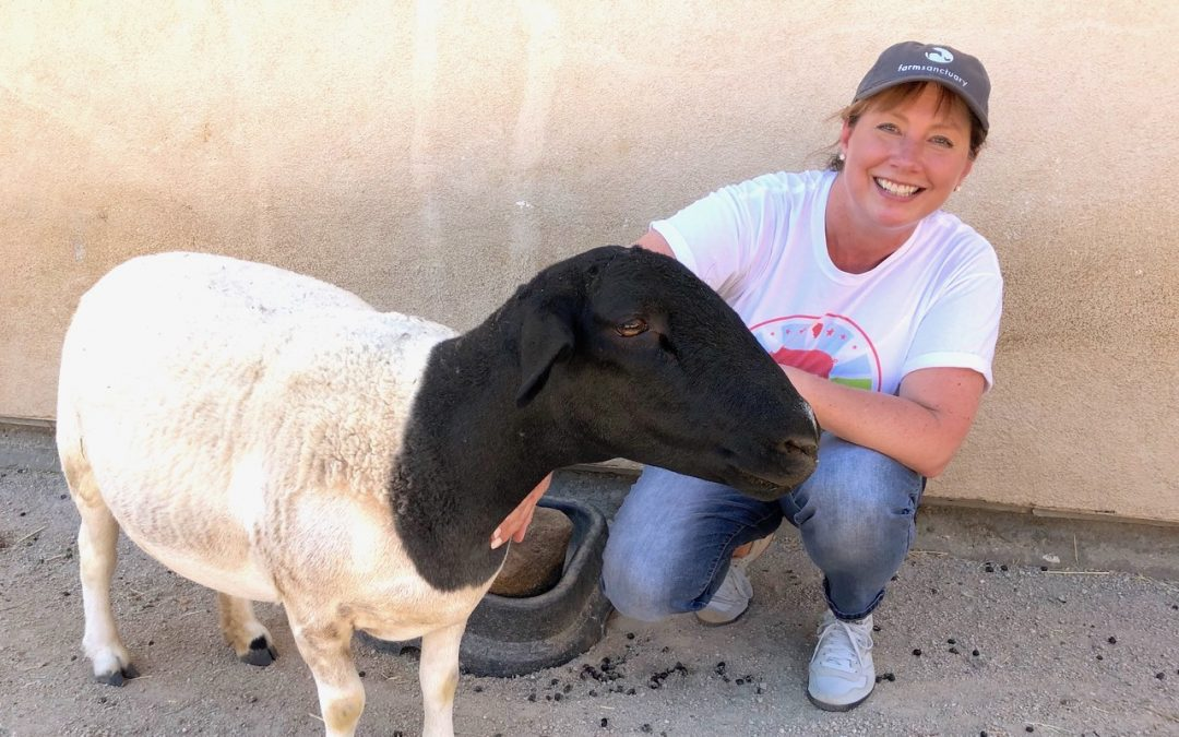 Crate Free USA Volunteer Profile: Christy Slaby