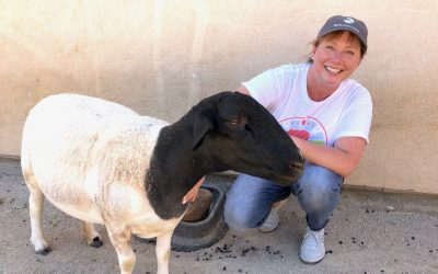 Crate Free Illinois Volunteer Profile: Christy Slaby