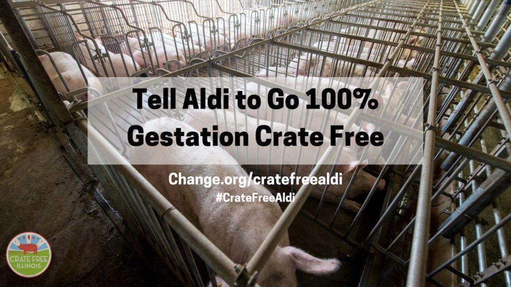 Go Crate Free Aldi